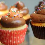 Close up Yellow cupcakes chocolate icing-2